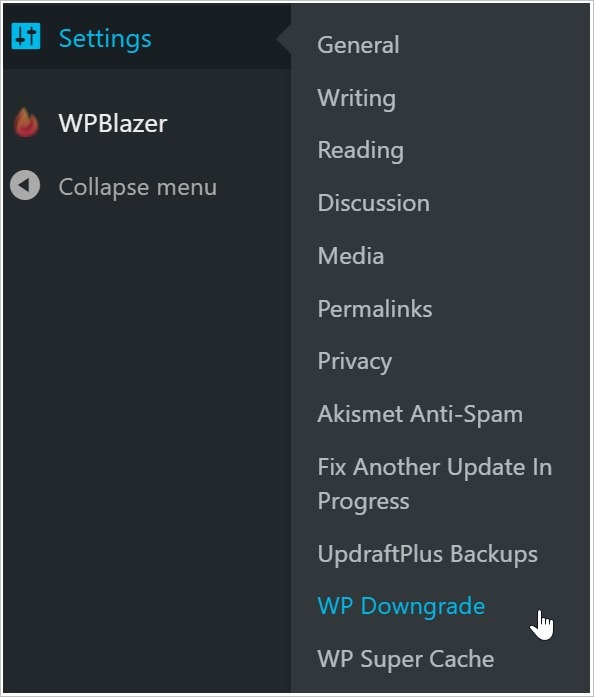 WP Downgrade settings