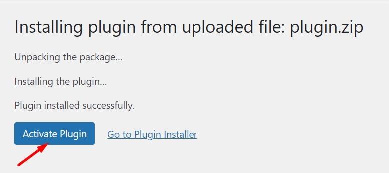 Successful Installation WP Plugin