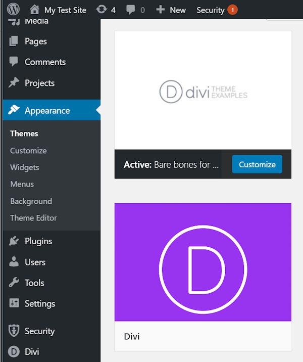 WordPress Development Divi